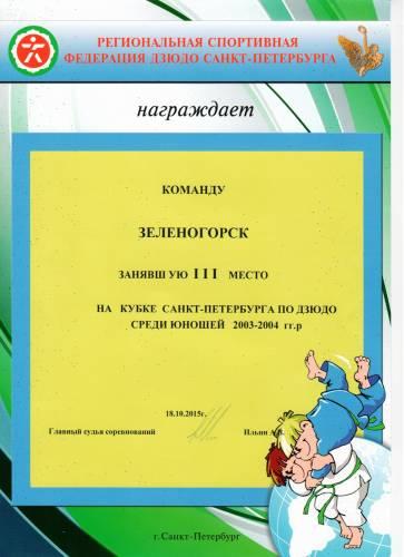 Команда СДЮСШОР г. Зеленогорска заняла III место на Кубке Санкт-Петерб